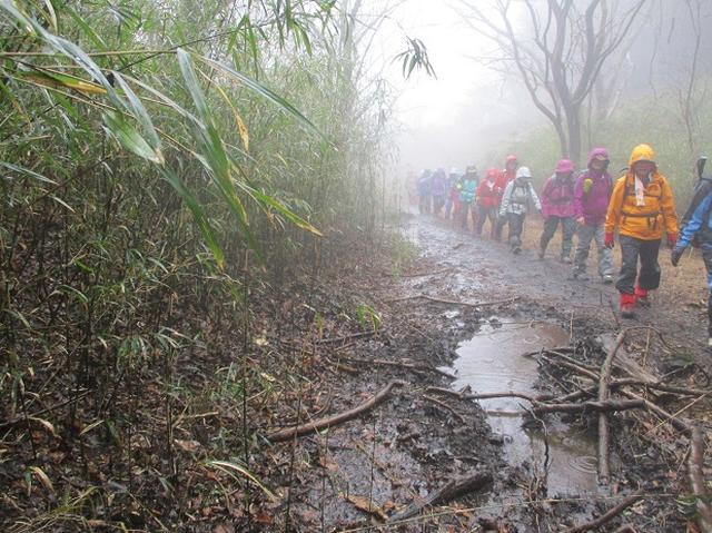 画像4: 2月28日に山旅会 「幕山と南郷山」 ツアーに行ってきました!