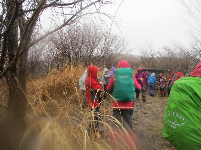 画像5: 2月28日に山旅会 「幕山と南郷山」 ツアーに行ってきました!