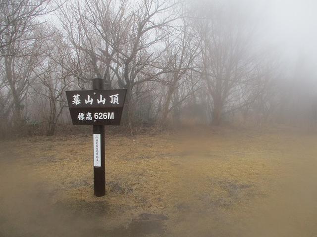 画像6: 2月28日に山旅会 「幕山と南郷山」 ツアーに行ってきました!