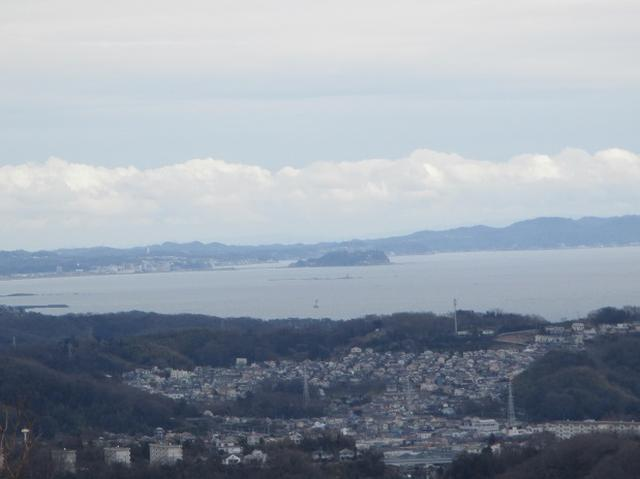 画像9: 2月25日に岡田ガイドのツアーで 曽我丘陵 へ行って来ました♪