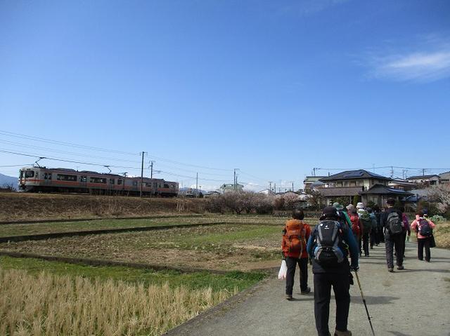 画像15: 2月25日に岡田ガイドのツアーで 曽我丘陵 へ行って来ました♪