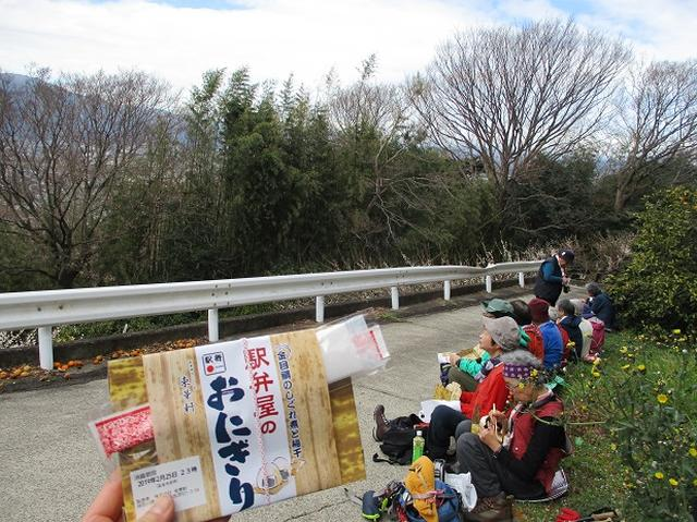 画像12: 2月25日に岡田ガイドのツアーで 曽我丘陵 へ行って来ました♪