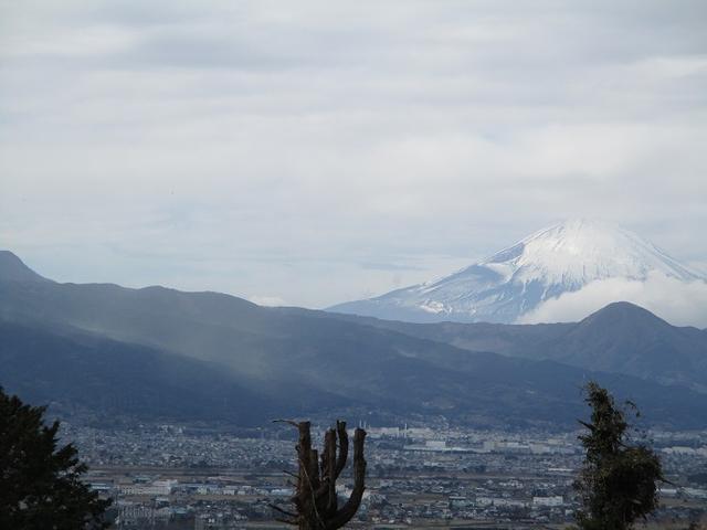画像10: 2月25日に岡田ガイドのツアーで 曽我丘陵 へ行って来ました♪