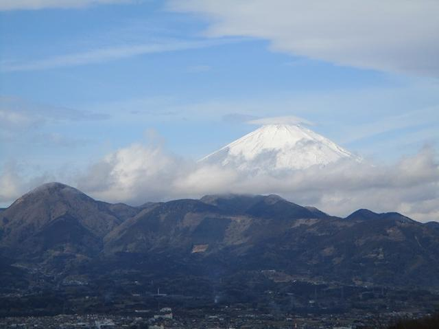 画像2: 2月25日に岡田ガイドのツアーで 曽我丘陵 へ行って来ました♪