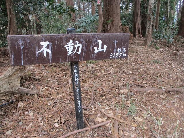 画像6: 2月25日に岡田ガイドのツアーで 曽我丘陵 へ行って来ました♪