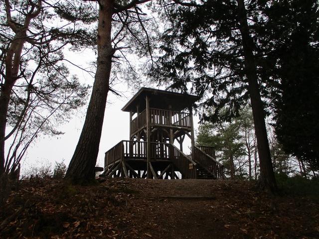 画像8: 山旅会 小倉山 ツアーの下見に行ってきました!