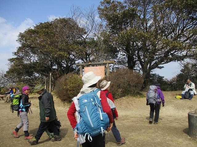 画像5: 3月2日に 安針塚から大楠山 ツアーに行ってきました!