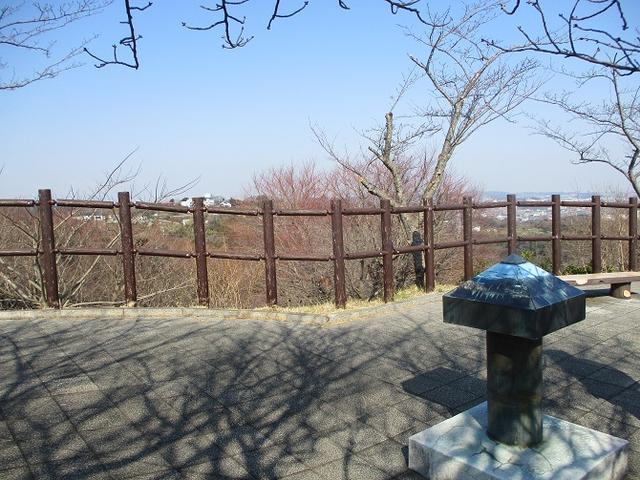 画像1: 3月2日に 安針塚から大楠山 ツアーに行ってきました!