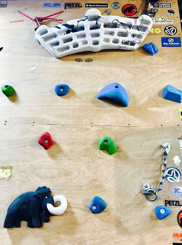 画像: 石井スポーツ登山本店にあるMAMMUTの壁!お洒落★
