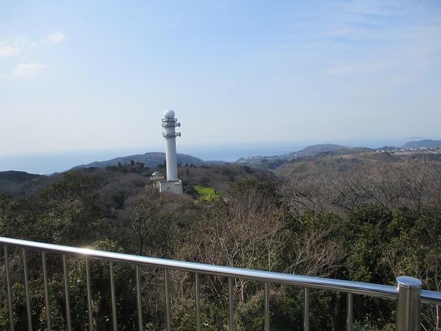画像6: 3月2日に 安針塚から大楠山 ツアーに行ってきました!