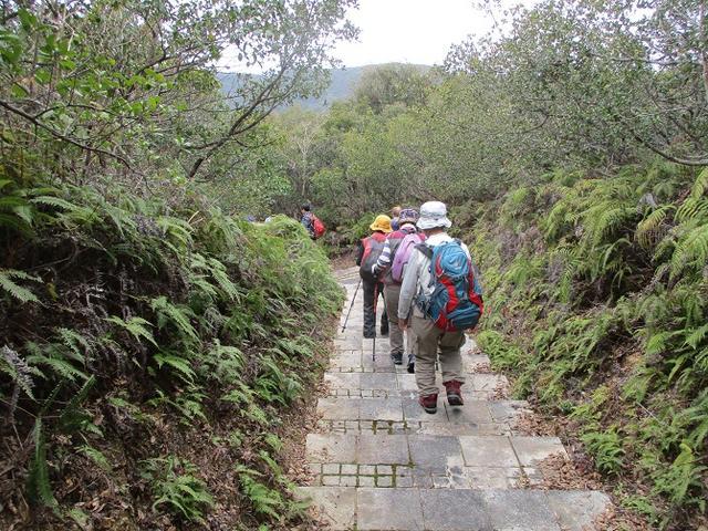 画像8: 3月6日・7日の2日間で 「横山と朝熊ヶ岳」 ツアーに行ってきました!