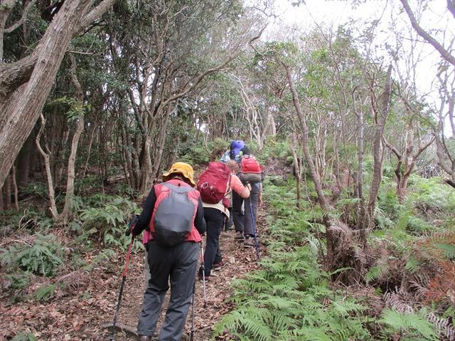画像5: 3月6日・7日の2日間で 「横山と朝熊ヶ岳」 ツアーに行ってきました!