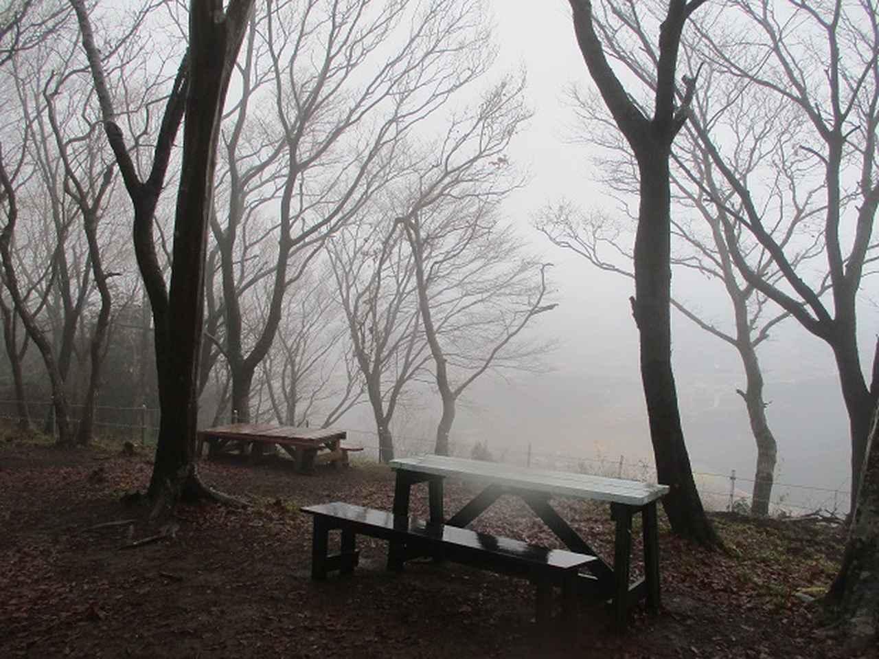 画像9: 3月4日に岡田ガイドのコースで、茨城県の 雪入山 へ行って来ました♪