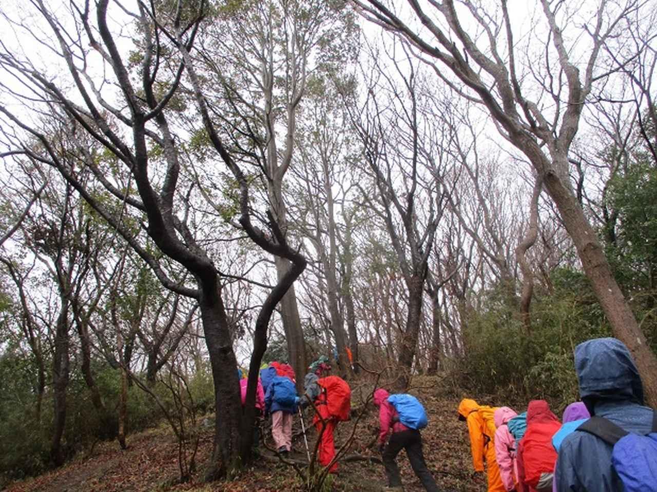画像2: 3月4日に岡田ガイドのコースで、茨城県の 雪入山 へ行って来ました♪