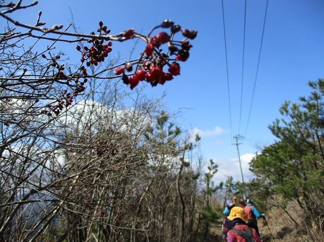 画像8: 3月6日・7日と 「横山と朝熊ヶ岳」 に行ってきました!