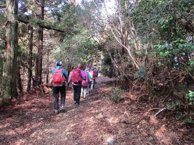 画像7: 3月6日・7日と 「横山と朝熊ヶ岳」 に行ってきました!