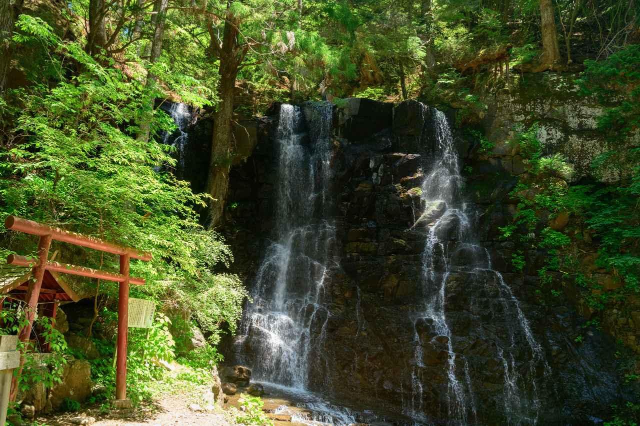 画像: 母の白滝(第1回) 新緑の清々しい春にたっぷりのマイナスイオンで癒されましょう