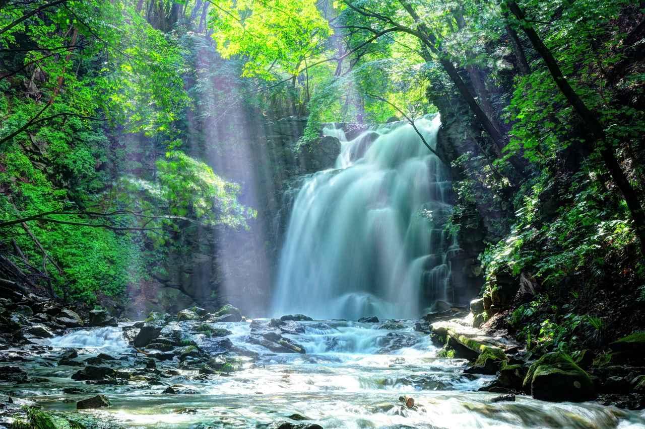 画像: 新緑映える浅間大滝(第2回)