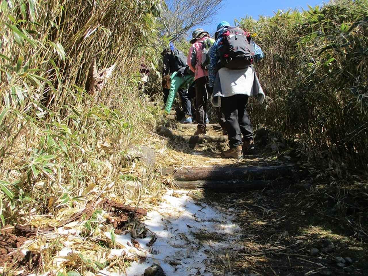 画像4: 3月8日に岡田ガイドと 達磨山 のツアーへ行ってきました♪