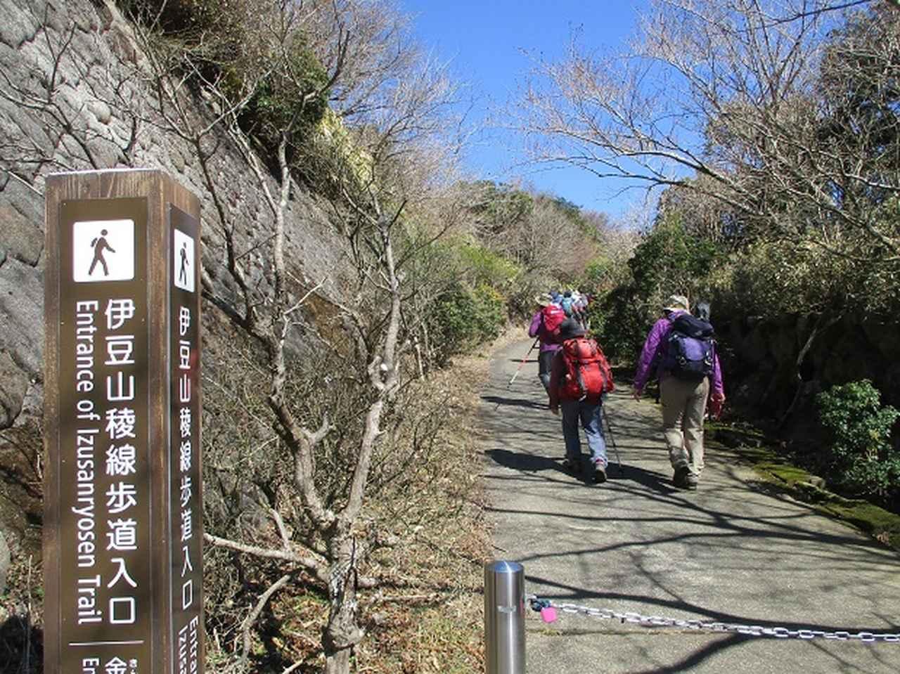 画像8: 3月8日に岡田ガイドと 達磨山 のツアーへ行ってきました♪