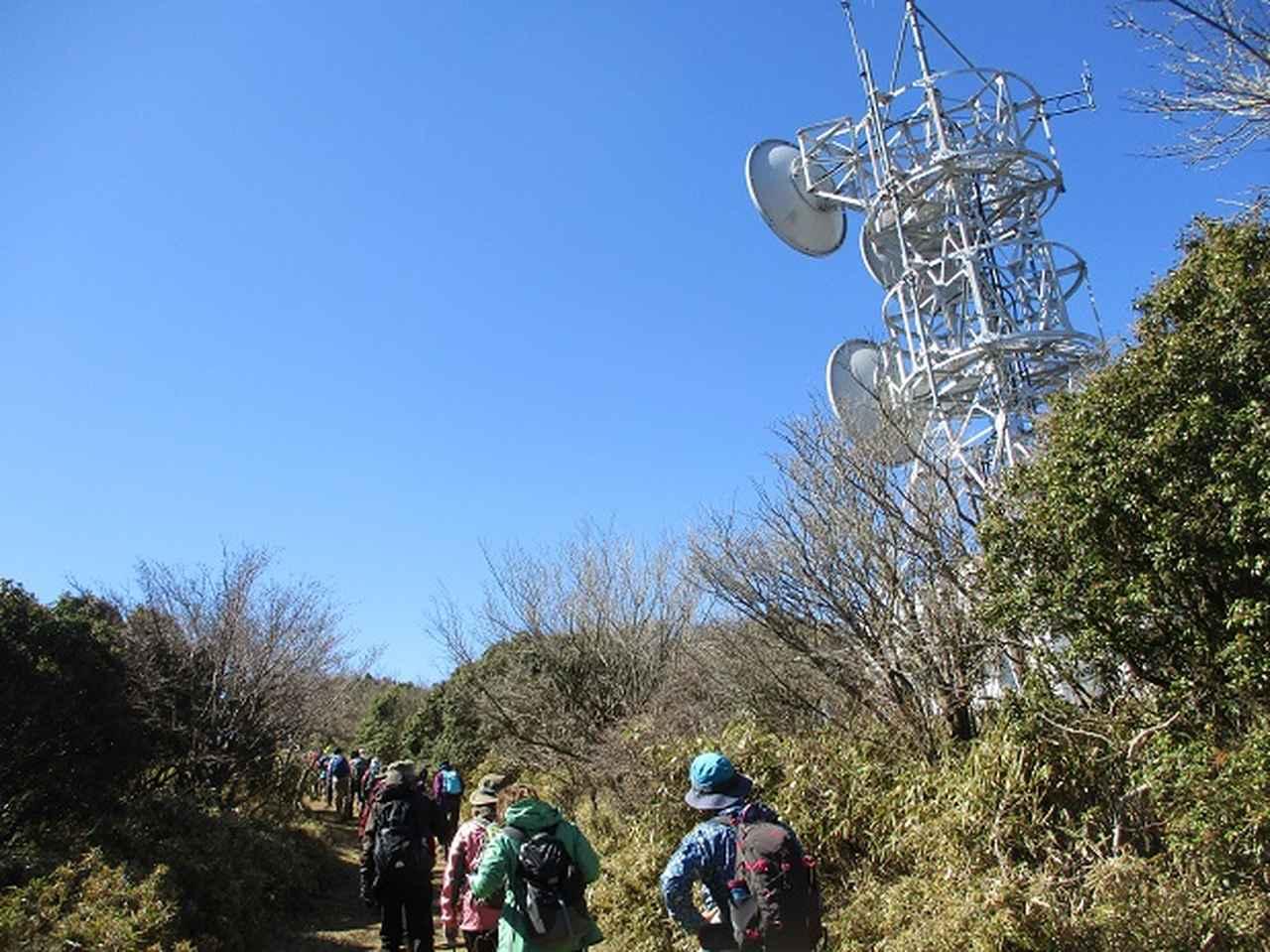 画像9: 3月8日に岡田ガイドと 達磨山 のツアーへ行ってきました♪