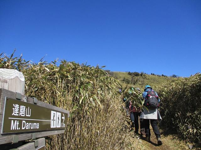 画像2: 3月8日に岡田ガイドと 達磨山 のツアーへ行ってきました♪