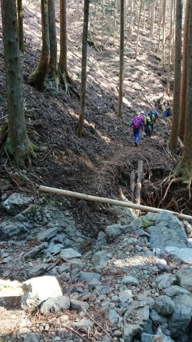 画像9: 3月9日に宮下ガイドと、 倉岳山 へ行ってきました♪
