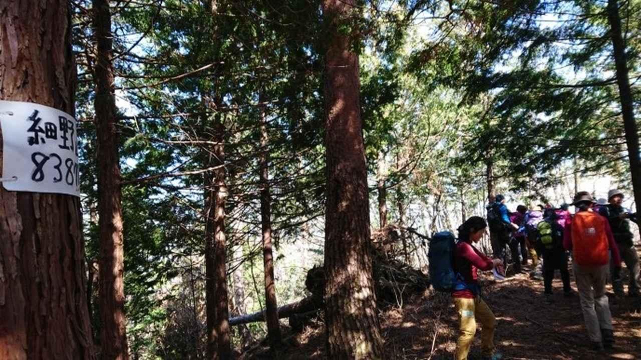 画像6: 3月9日に宮下ガイドと、 倉岳山 へ行ってきました♪