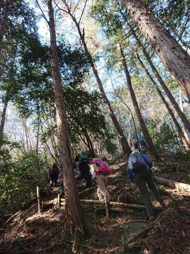 画像4: 3月2日に佐藤優ガイドの「ごちそう山」シリーズで、 雨巻山 へピザを食べに行って来ました♪