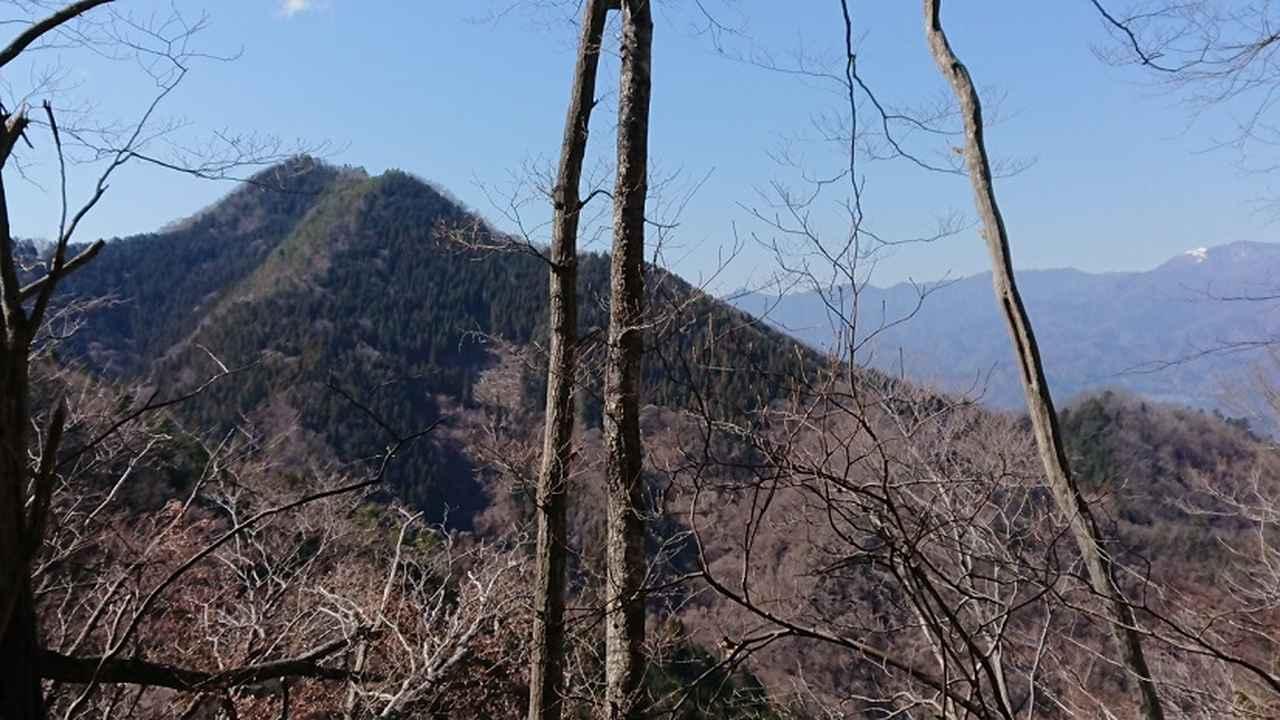 画像8: 3月9日に宮下ガイドと、 倉岳山 へ行ってきました♪