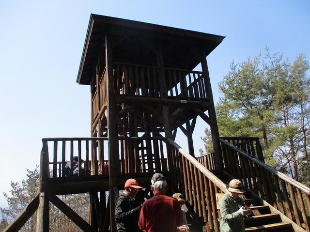 画像5: 3月15日に山旅会 「小倉山」 へ行ってきました!