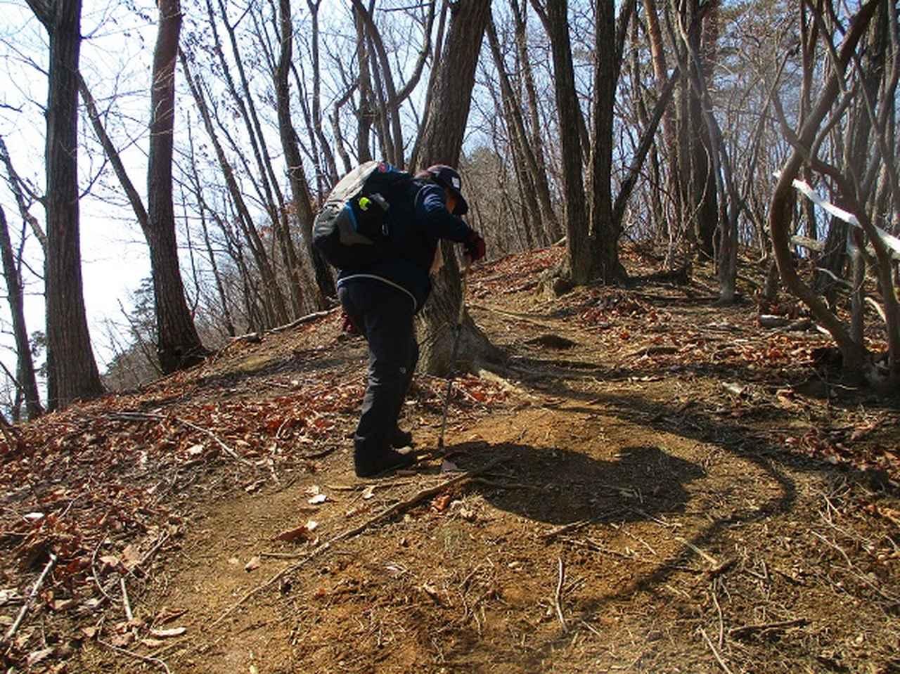 画像3: 3月15日に山旅会 「小倉山」 へ行ってきました!