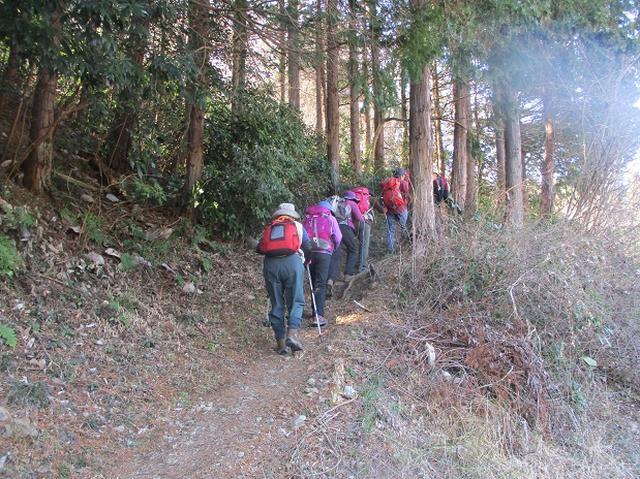 画像5: 日3月18日に山旅会 笠山から堂平山 ツアーに行ってきました!