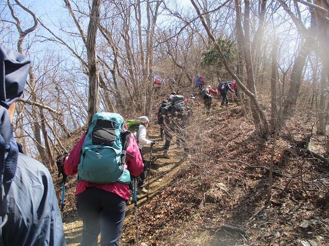 画像6: 日3月18日に山旅会 笠山から堂平山 ツアーに行ってきました!
