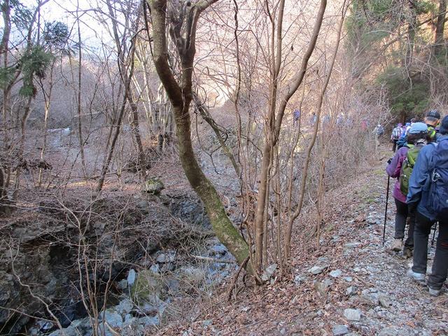 画像11: 日3月18日に山旅会 笠山から堂平山 ツアーに行ってきました!