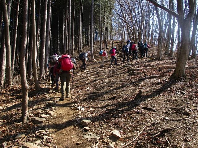 画像8: 日3月18日に山旅会 笠山から堂平山 ツアーに行ってきました!