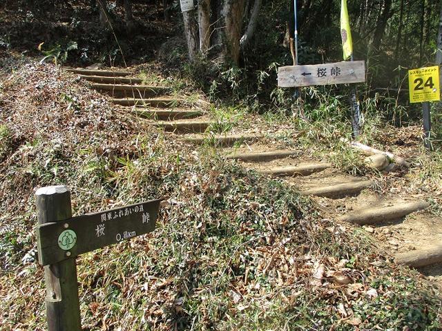 画像2: 山旅会 「晃石山から太平山」 ツアーの直前下見に行ってきました!