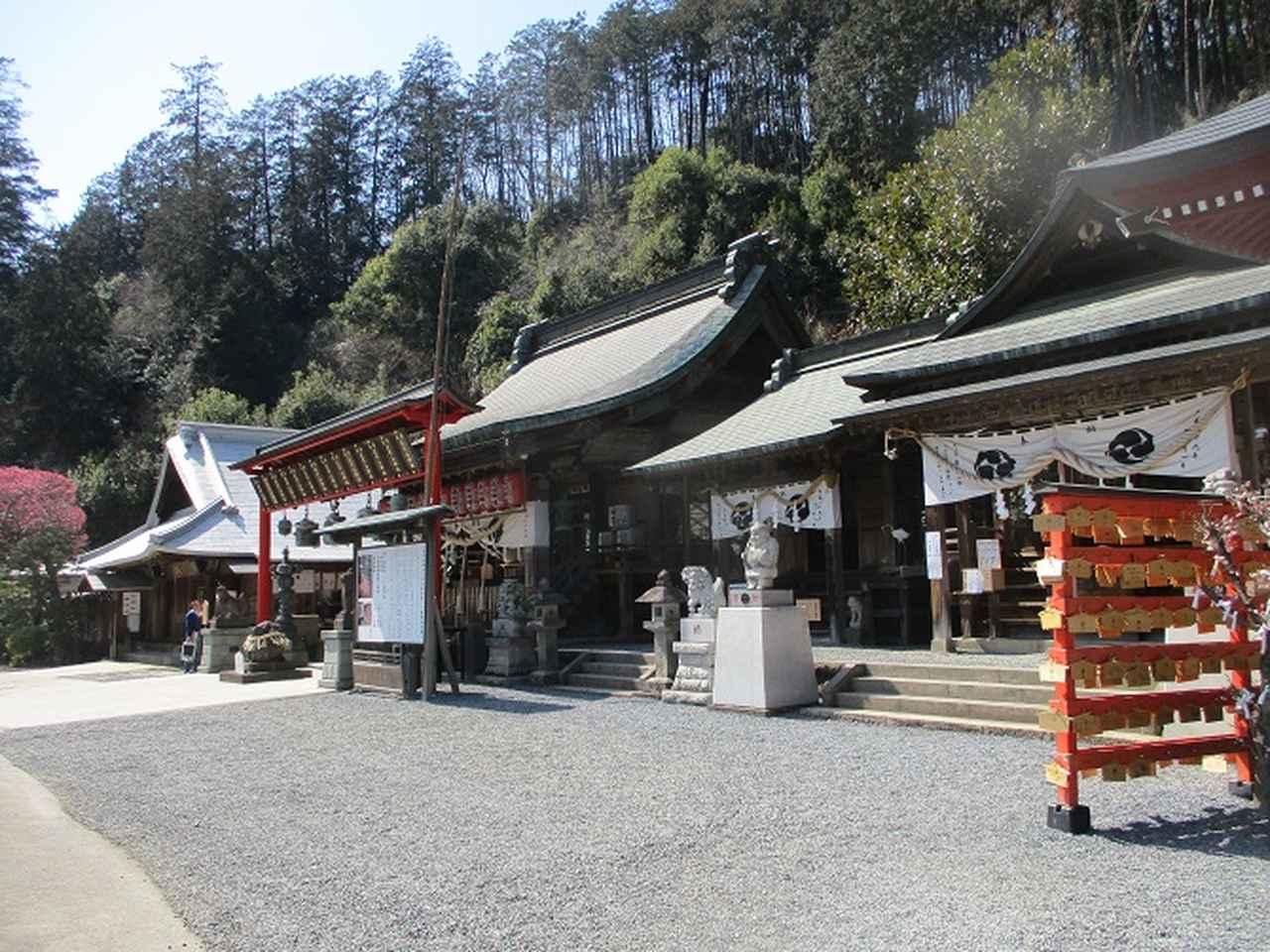 画像9: 山旅会 「晃石山から太平山」 ツアーの直前下見に行ってきました!