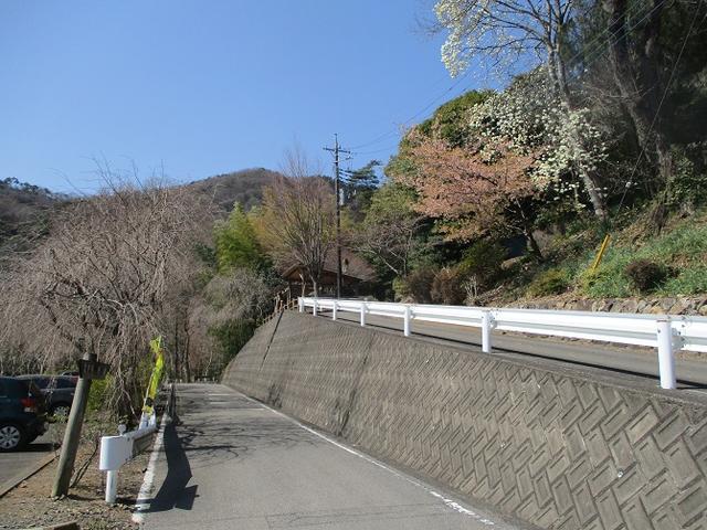 画像1: 山旅会 「晃石山から太平山」 ツアーの直前下見に行ってきました!