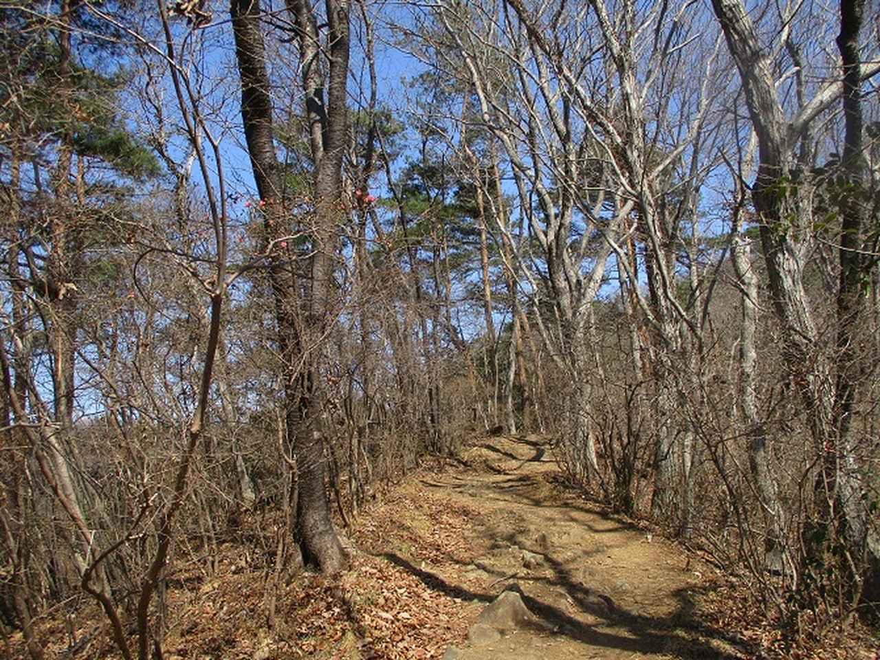 画像4: 山旅会 「晃石山から太平山」 ツアーの直前下見に行ってきました!