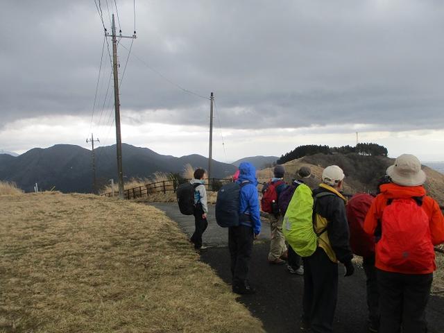 画像6: 3月21日に山旅会 大野山 ツアーに行ってきました!