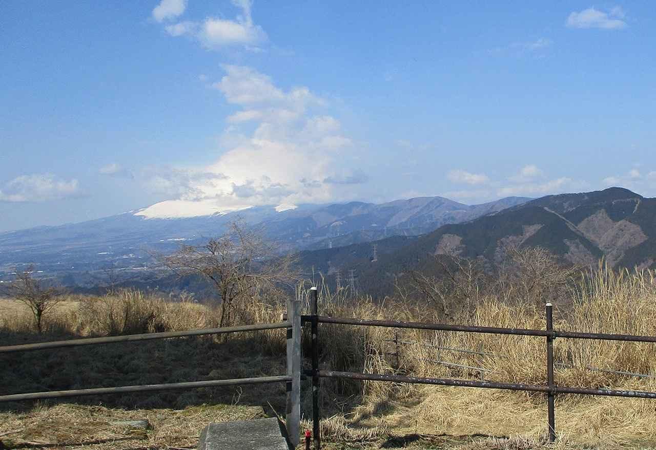 画像8: 3月21日に山旅会 大野山 ツアーに行ってきました!