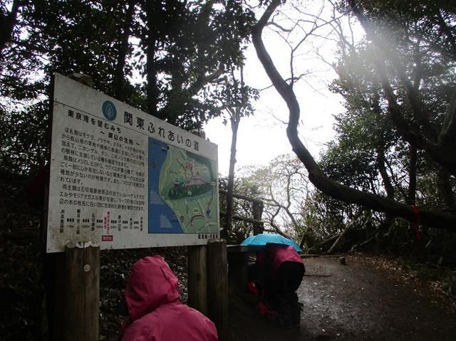 画像7: 3月23日に山旅会 「東京湾フェリーで行く鋸山」 ツアーに行ってきました!