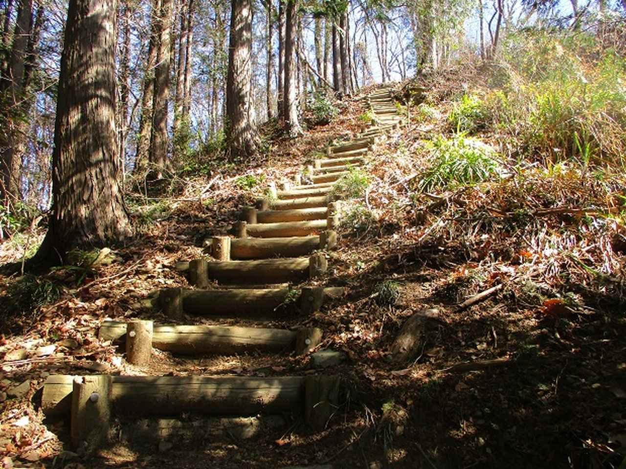 画像2: 3月の山旅会 「陣見山」 の直前下見報告です!