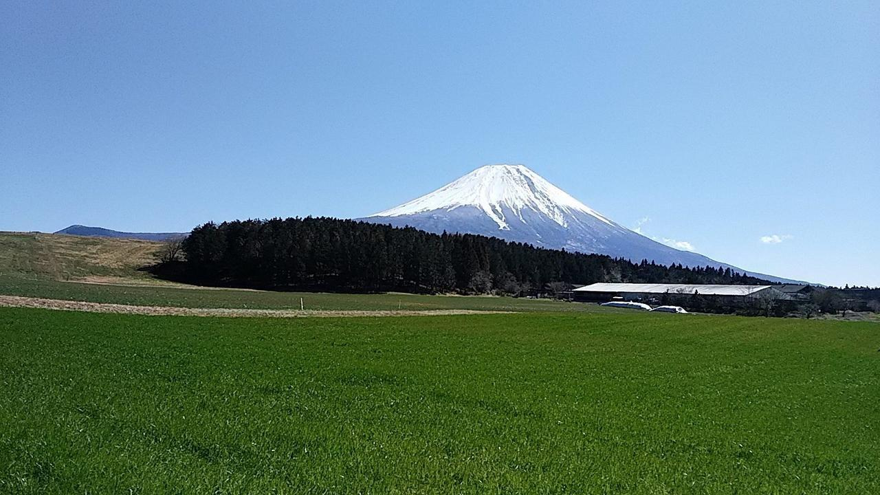 画像: ふもとっぱらで見えた富士山