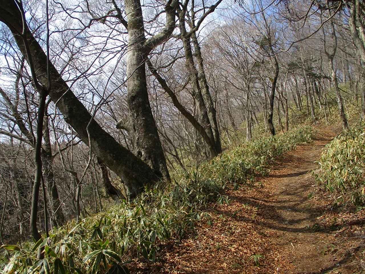画像5: 4月の山旅会 「八溝山」 の直前下見報告です!