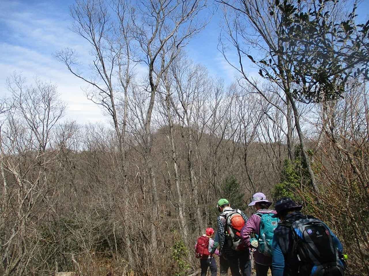画像11: 3月22日にカタクリで有名な 三かも山 へ行ってきました♪
