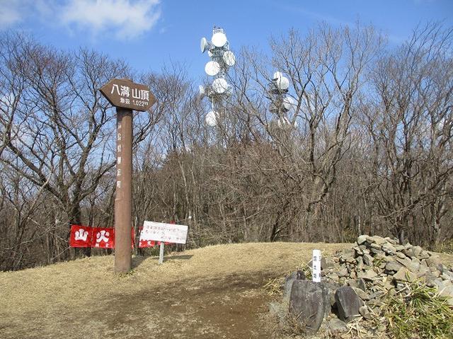 画像7: 4月の山旅会 「八溝山」 の直前下見報告です!