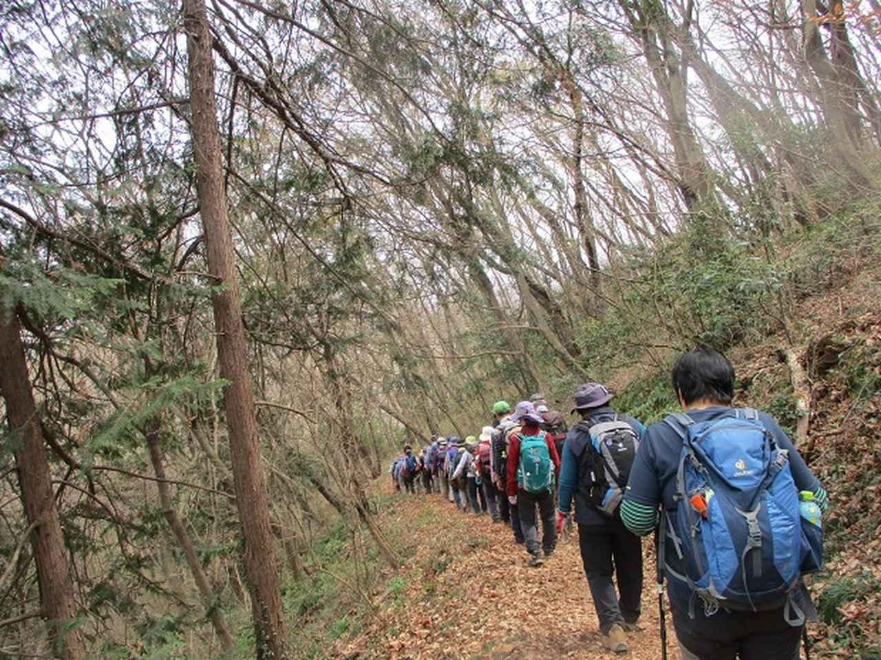 画像13: 3月22日にカタクリで有名な 三かも山 へ行ってきました♪