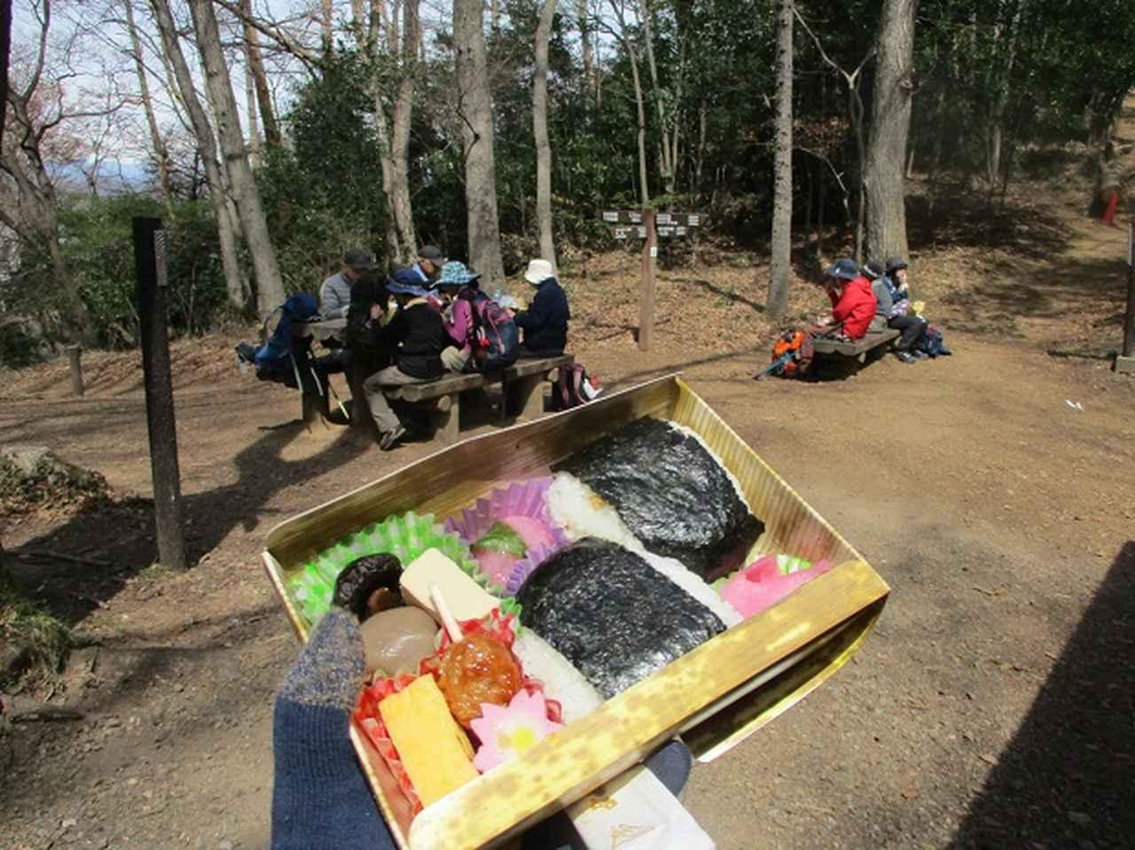 画像10: 3月22日にカタクリで有名な 三かも山 へ行ってきました♪